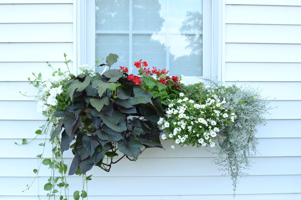 DIY Window Planter Boxes II | www.pearlsandsportsbras.com |