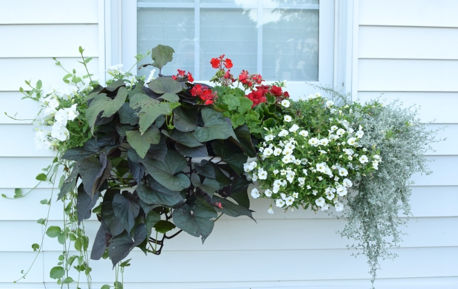 DIY Window Planter Boxes II | www.pearlsandsportsbras.com |